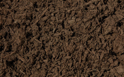 Compost – Screened